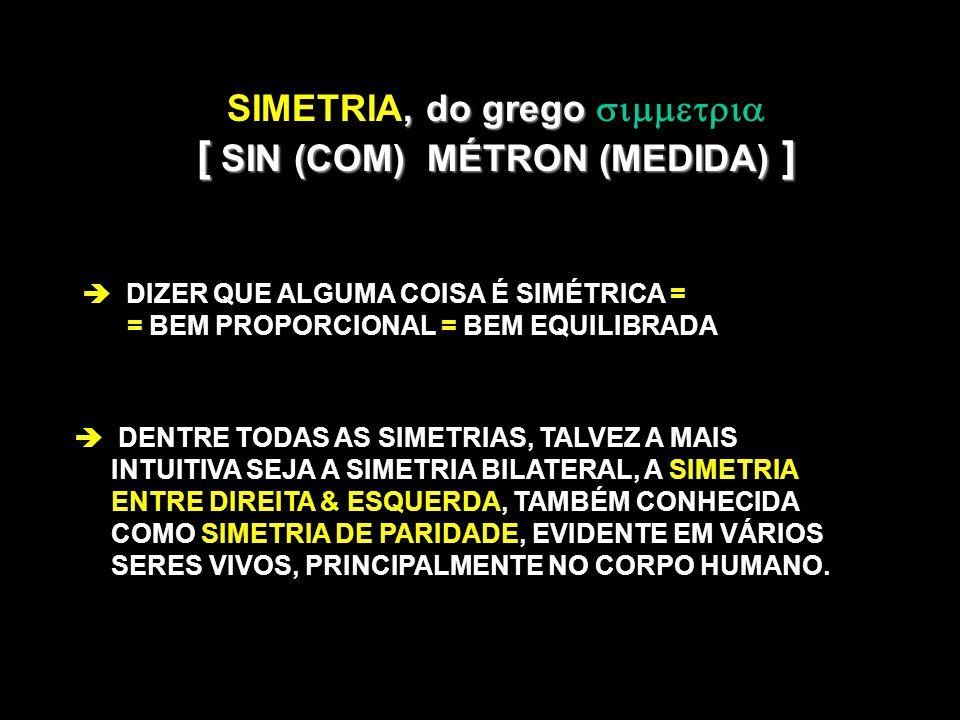 SIMETRIA, do grego  [ SIN (COM) MÉTRON (MEDIDA) ]